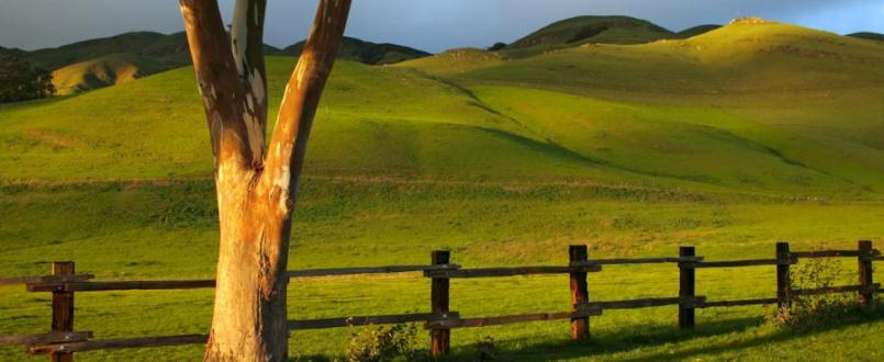 Santa Ynez Real Estate - Vacant Land Listings